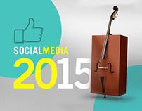 Social media posts 2015