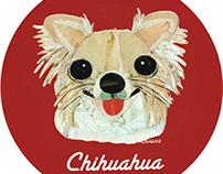 036 |  Chihuahua