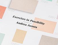 Andrea Acosta, Artist Brochure