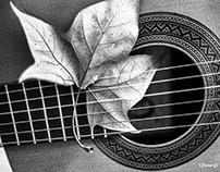 Autumn Guitar