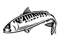 Various - line illustrations