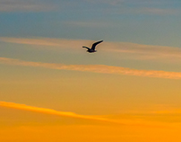 sunset on salton sea