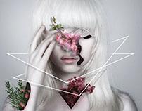 Beautiful Albino