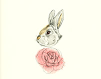 Rabbit & Rose