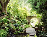 peace porridge pond