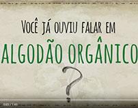 Algodão Orgânico | Haikai Infográfico animado 2016