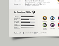 Info-graphic Design (My Professional Resume)