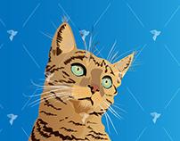 Realistic Cat Illustration