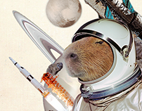 Untitled collage : #1Capybara