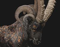 Monster Demon: Abrakabeast (Part II)