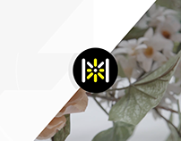 Motion Design & Vidéo de la 3e journée de Museomix Qc16