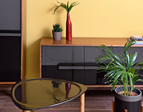 Mid-century modern furniture set