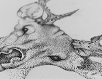 Deer Illustrtation