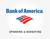 Spending & Budgeting