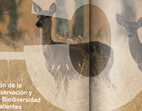 State Strategies for Biodiversity - AGS, México