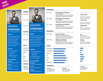 Clean Microsoft Word Resume Template Free