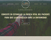 Colibri Holistic Wellness | Web Design Project: