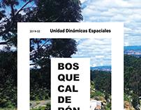 CC_UI DINÁMICAS ESPACIALES TEORÍA_BOSQUECALDERÓN_201920