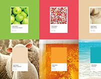 Pantone notebooks