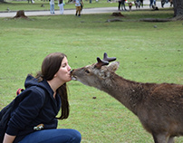 Why Animal Lovers Make Relationships Stronger?