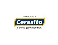 Pinturas Ceresita - Social media