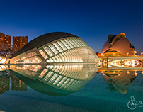 City of Arts & Science, Valencia