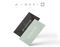 Corporate Identity design and development for Quantum.