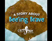 A Story About Bee'ing Brave Video