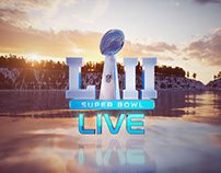 SuperBowl LII Package