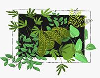 Intgarden - Illustrations