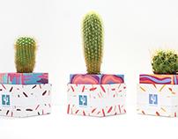 Cubicle Cacti