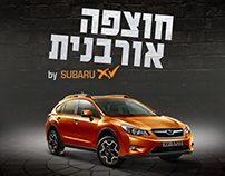 "Subaru ""Urban Audacity"" Commertial WEB Campaign"