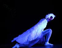 Costume Designing for a balet recital.