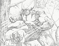 Wolverine in the Woods