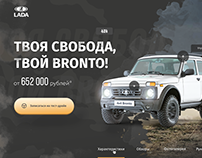 Promo from NIVA BRONTO (Main Page Concept)
