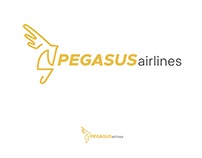 Re-Branding an Existing Company: Pegasus Airlines