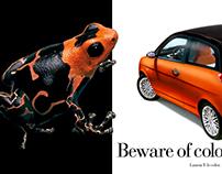 Print - Beware of colors