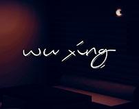 wu xing — Restaurant Interior Design