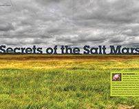 Secrets of the Salt Marsh – Editorial Layout