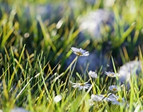 CGI Grass