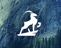 IBEX - Logo Design