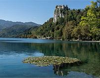 il lago di Bled - l'acqua