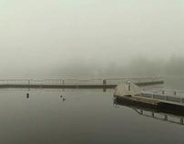 Pine Lake Early Morning