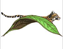 Hoja Nueva Logo