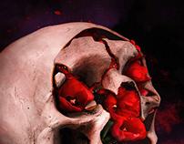 Skull Series #32-37