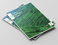Collateral Designs for Green Innovation Fund