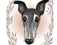 Custom pet portrait hand-drawn illustrations