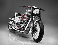 AS  |  Custom Bike