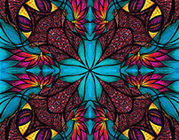 kaleidoscopic creatures