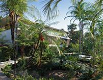 Globeplants bundle 15 : Palm World